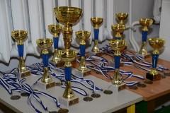 Puchar Klubu 2015 - 9.01.2016