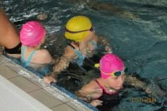 11.11.2014 - VII Ogólnopolskie zawody pływackie z okazji Święta Niepodległości o Puchar Burmistrza Sochaczewa