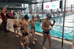 OMDO , 3. eliminacje - Delfiny popłynęły na medal, Warszawsko Mazowiecki Okręgowy Związek Pływacki